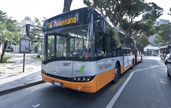 foto di oggi- bus 18 metri
